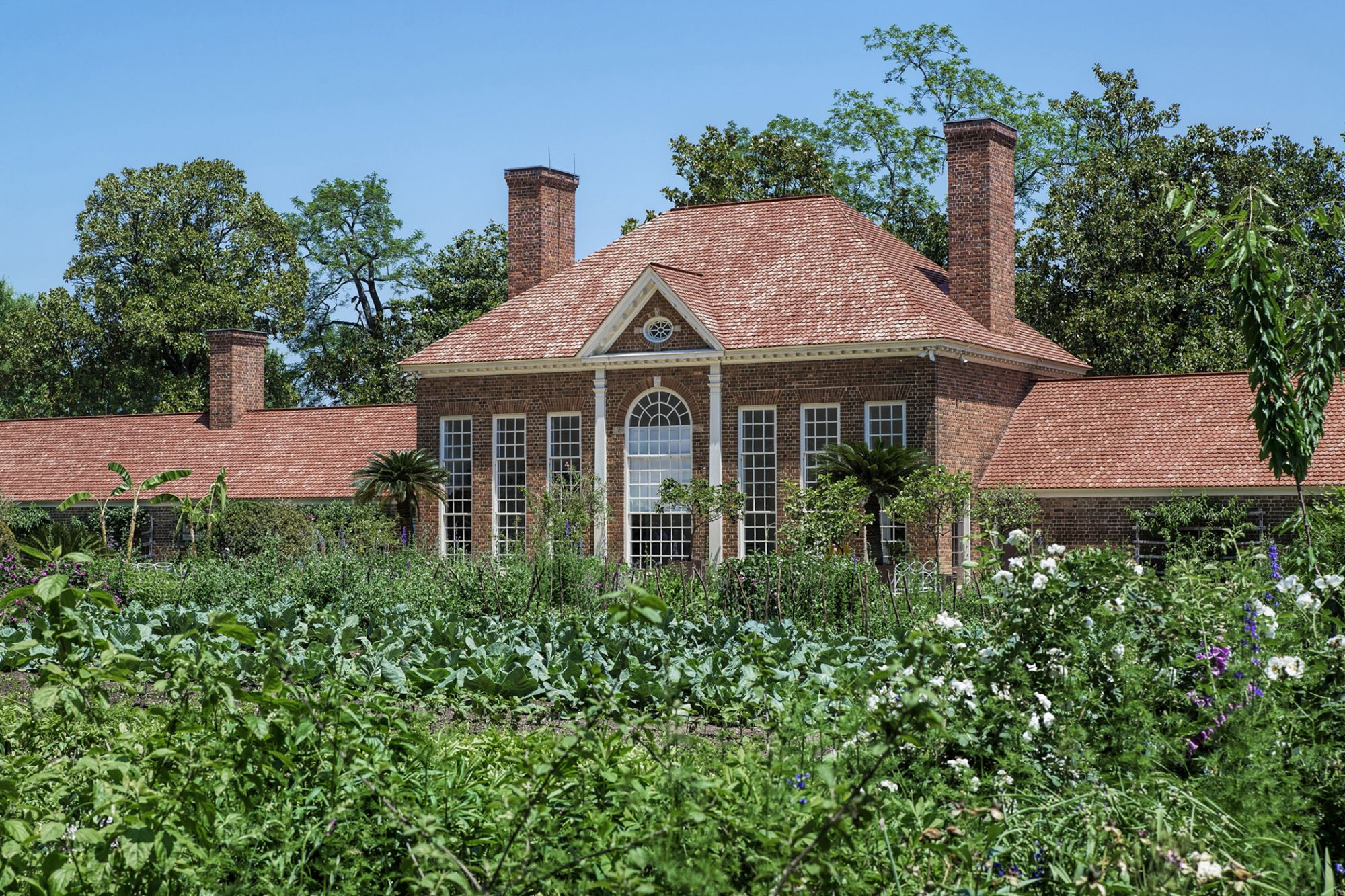 Legal Hemp Is Being Planted at George Washington's Historic Estate for the First Time in 200 Years