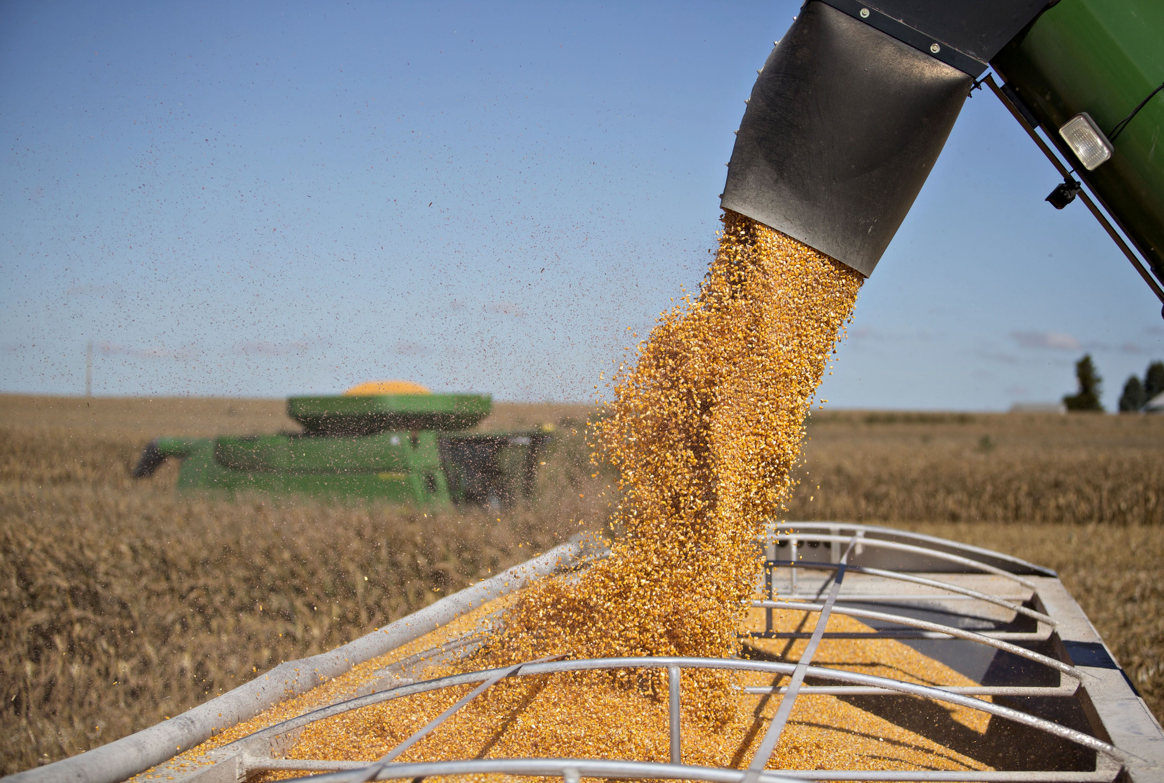 Corn futures surge, bringing May gain to 20% as soft commotities rally on Midwest flooding