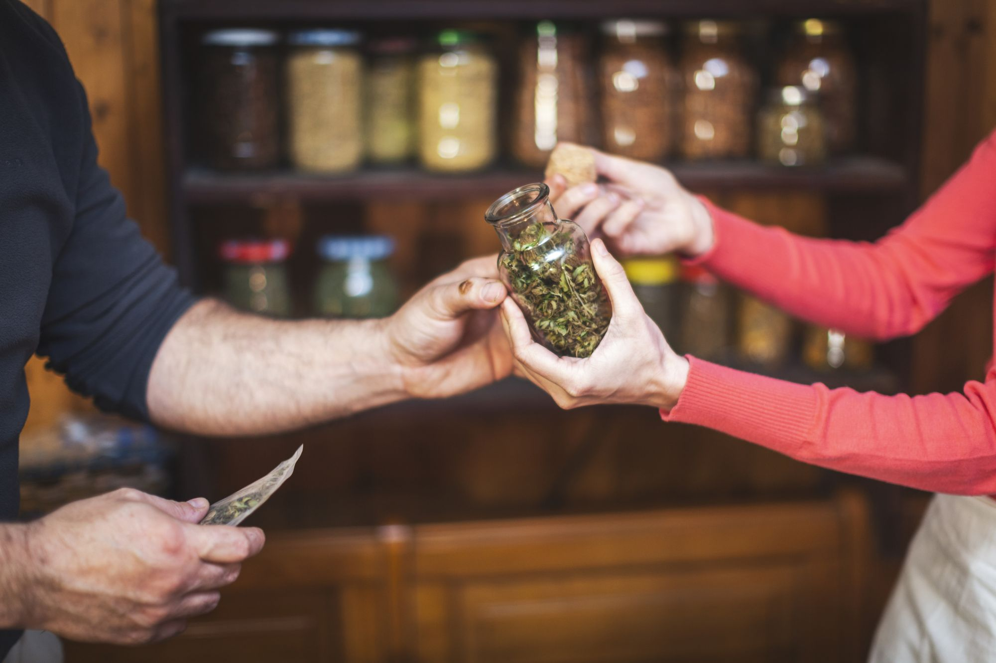 Cannabis Entrepreneurs: Know the Perils of 'Accidental Franchising'