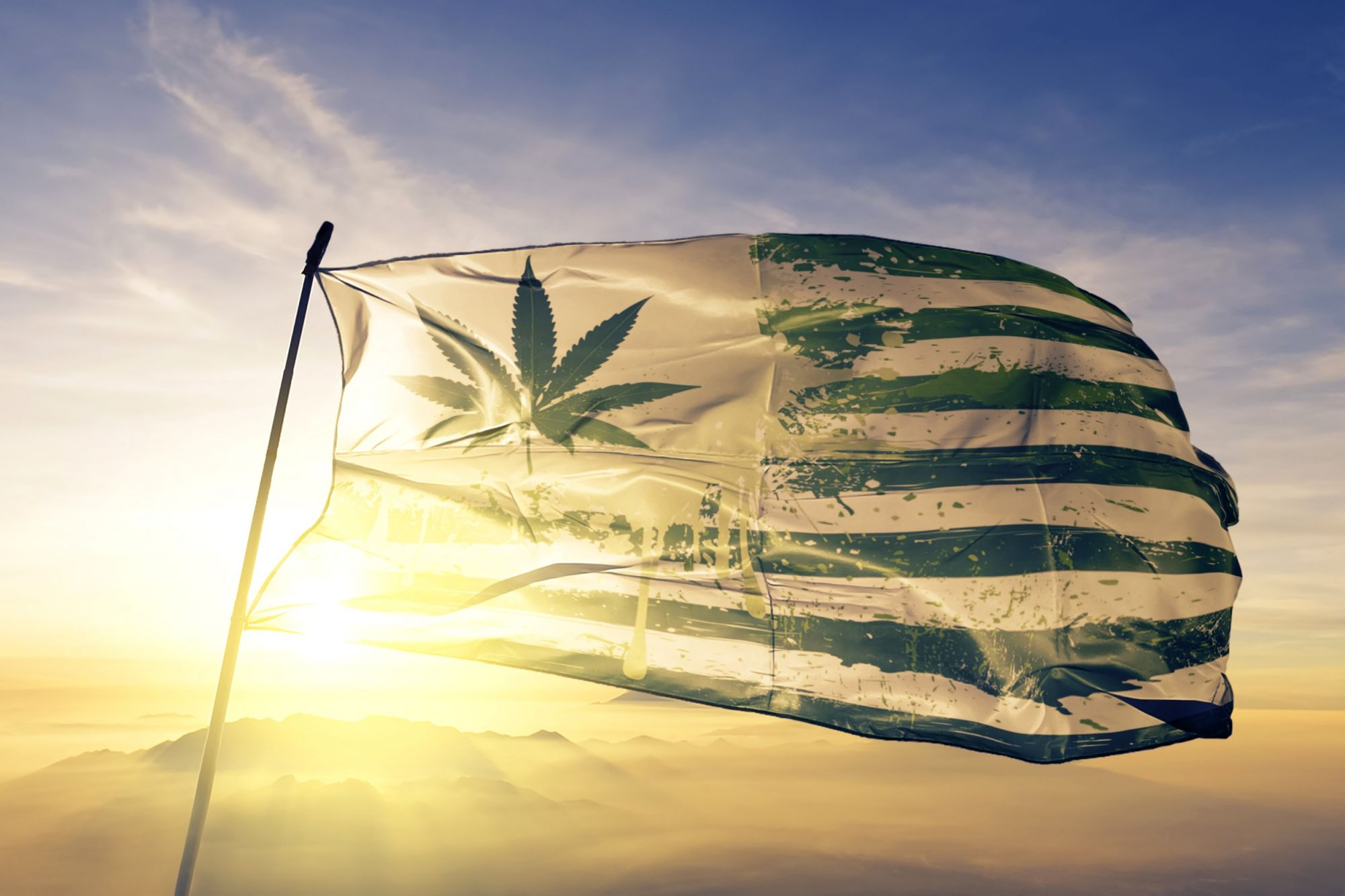 USA! Americans Spent $400M on Cannabis for Fourth of July