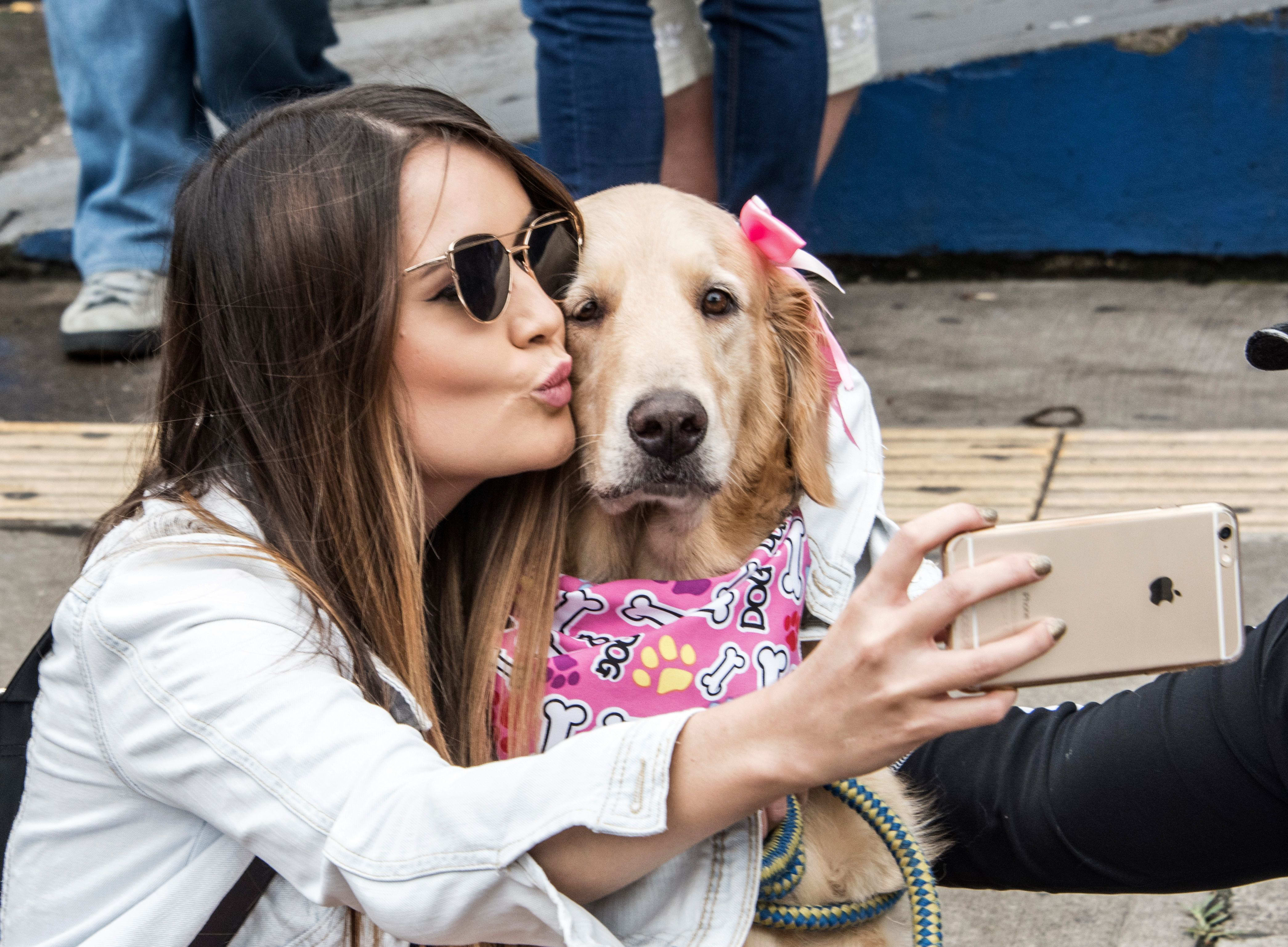 Synchrony Financial bets on Americans' growing pet obsessions