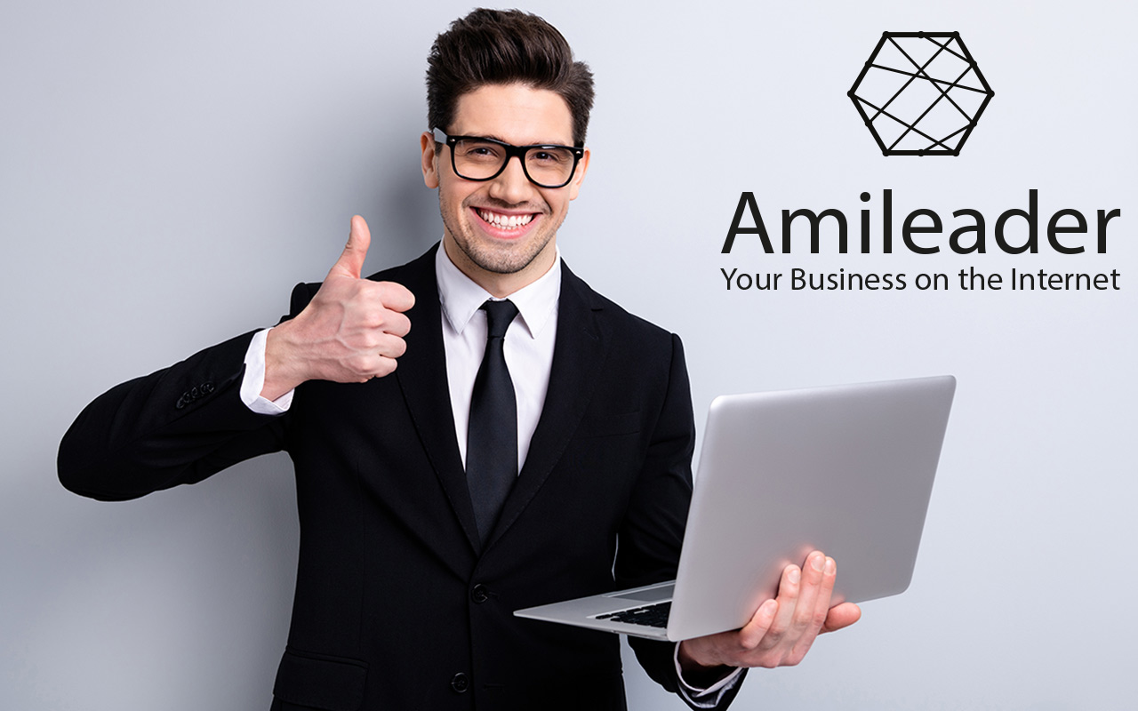 Amileader - a step-by-step guide for taking your business to the Web