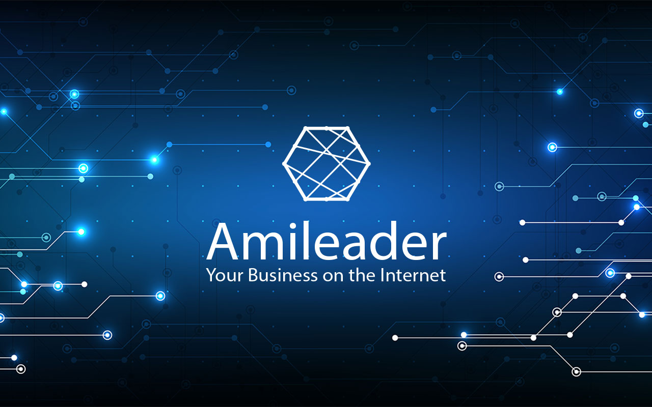 Amileader teaches Google how to present your business correctly