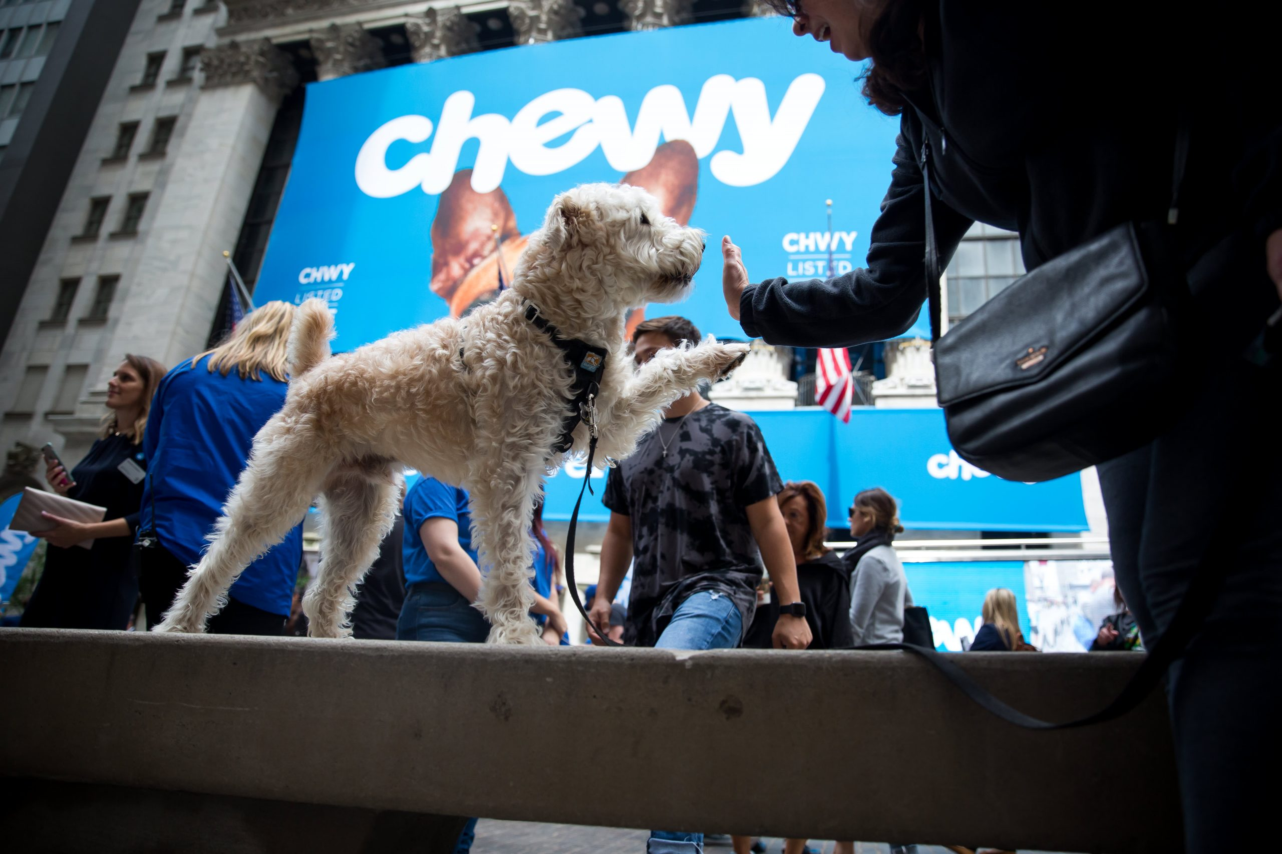 Stocks making the biggest moves after hours: Chewy, Dave & Busters, Vertex Pharmaceuticals and more