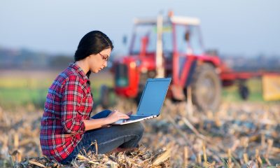 Entrepreneurs are sought to help improve the quality of life of farmers in Mexico